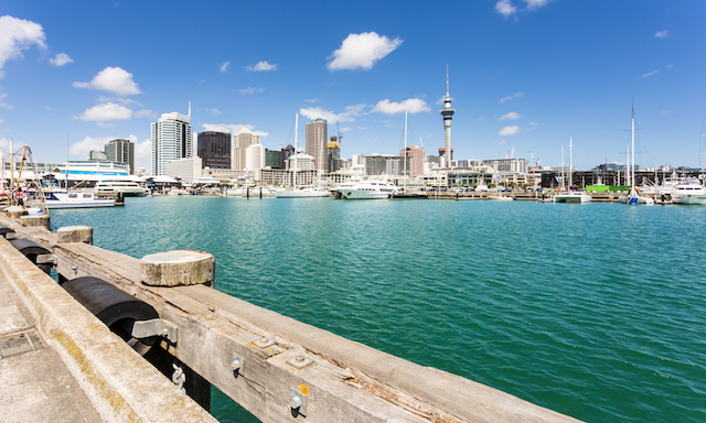 Auckland City and Harbour Highlights with Airport Drop Off