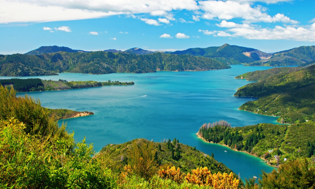Eco Cruise and Conservation Tour